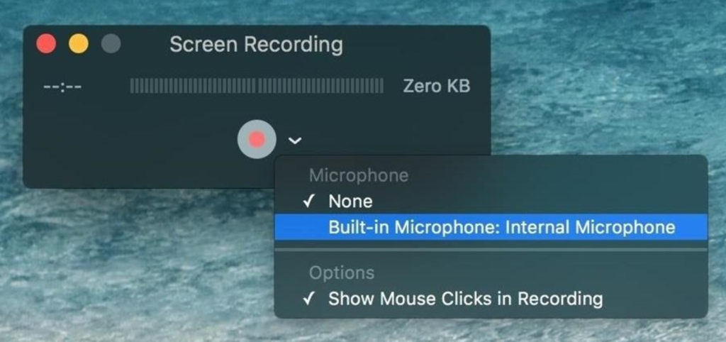 quicktime player interface
