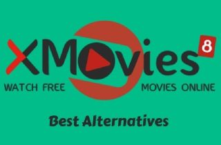 Top 10 Sites to Consider as an Xmovies8 Alternative