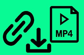 Review for Best URL to MP4 Video Downloader