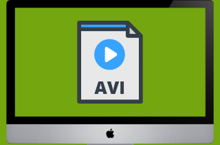 Feasible Solutions to Play AVI on Mac